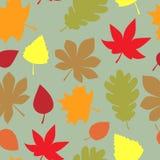 Autumn pattern beautiful bright leaves. Cuty royalty free illustration