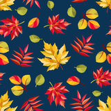 Autumn pattern with colorful abstract leaves Royalty Free Stock Image