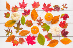 Autumn pattern composition of colorful leaves and pumpkins. Stock Photo