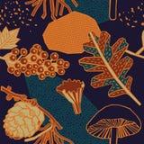 Autumn pattern design. Vector illustration. Autumn pattern design. Plants mushrooms and berries Vector Illustration