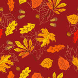 Autumn pattern with leaves of different trees Royalty Free Stock Image