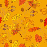 Autumn pattern with leaves of different trees Stock Images