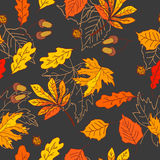 Autumn pattern with leaves of different trees Royalty Free Stock Photo