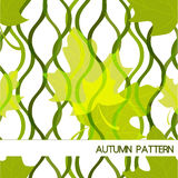 Autumn pattern with leaves Stock Photo