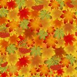 Autumn pattern with maple leaves and Rowan. Autumn pattern with maple leaves, the leaves of chestnut and Rowan. Seamless pattern Stock Photos