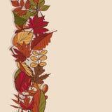 Autumn Pattern Modelo de las hojas de otoño Hojas rojas, amarillas y verdes de los árboles forestales Frontera inconsútil Uso com Imagen de archivo