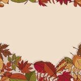 Autumn Pattern Modelo de las hojas de otoño Hojas rojas, amarillas y verdes de los árboles forestales Frontera inconsútil Uso com Foto de archivo libre de regalías