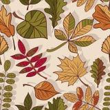 Autumn Pattern Patroon van de herfstbladeren Rode, gele en groene bladeren van bosbomen Naadloze textuur Gebruik als vullingspatr Stock Afbeelding