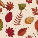 Autumn Pattern Patroon van de herfstbladeren Rode, gele en groene bladeren van bosbomen Naadloze textuur Gebruik als vullingspatr Stock Fotografie