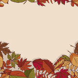 Autumn pattern. Pattern of autumn leaves. Red, yellow and green leaves of forest trees. Seamless Border.  Use as a background of t Royalty Free Stock Photo