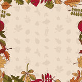 Autumn pattern. Pattern of autumn leaves. Red, yellow and green leaves of forest trees.  Seamless frame. Use as a  background of t Royalty Free Stock Images
