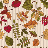 Autumn pattern. Pattern of autumn leaves. Red, yellow and green leaves of forest trees. Seamless texture. Use as a fill pattern, o Royalty Free Stock Photo