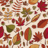 Autumn pattern. Pattern of autumn leaves. Red, yellow and green leaves of forest trees. Seamless texture. Use as a fill pattern, o. R background of the web page Royalty Free Stock Images