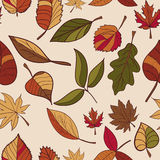 Autumn pattern. Pattern of autumn leaves. Red, yellow and green leaves of forest trees. Seamless texture. Use as a fill pattern, o Royalty Free Stock Images