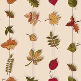 Autumn Pattern Reticolo dei fogli di autunno Rosso, giallo e foglie verdi degli alberi forestali Struttura senza giunte Uso come  Fotografia Stock Libera da Diritti