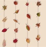 Autumn Pattern Reticolo dei fogli di autunno Rosso, giallo e foglie verdi degli alberi forestali Struttura senza giunte Uso come  Fotografia Stock