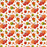 Autumn pattern with rowan berries. Vector seamless background. Royalty Free Stock Photo