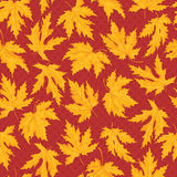 Autumn pattern seamless Royalty Free Stock Images
