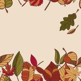 Autumn Pattern Teste padrão das folhas de outono Folhas vermelhas, amarelas e verdes de árvores de floresta Beira sem emenda Uso  Fotos de Stock Royalty Free