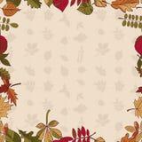 Autumn Pattern Teste padrão das folhas de outono Folhas vermelhas, amarelas e verdes de árvores de floresta Frame sem emenda Uso  Imagens de Stock Royalty Free