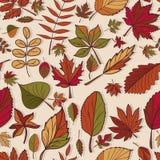 Autumn Pattern Teste padrão das folhas de outono Folhas vermelhas, amarelas e verdes de árvores de floresta Textura sem emenda Us Imagens de Stock Royalty Free