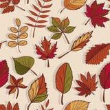 Autumn Pattern Teste padrão das folhas de outono Folhas vermelhas, amarelas e verdes de árvores de floresta Textura sem emenda Us Foto de Stock Royalty Free