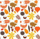 Autumn. Pattern Stock Photo
