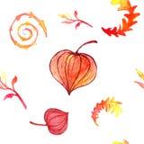 Autumn pattern Stock Images