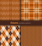 Autumn patterns Stock Photography