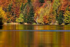 Autumn on peaceful lake. With reflections on surface Royalty Free Stock Images