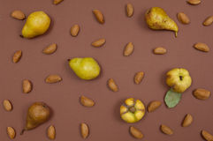Autumn pear and nut pattern on brown background Stock Image