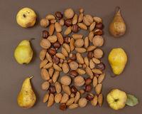 Autumn pear and nut pattern on brown background Stock Photos