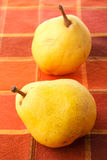 Autumn pears Royalty Free Stock Image