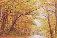 Autumn in Pennsylvania Royalty Free Stock Image