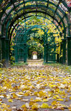 Autumn Pergola Royalty Free Stock Photos