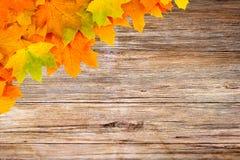 Autumn period stock image