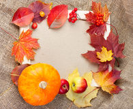 Autumn photo frame. Wooden photo frame with leaves, berries and pumpkins Royalty Free Stock Photo