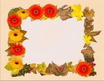 Autumn photo frame Stock Photo