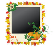 Autumn photo frame with leaves and pumpkin Stock Image