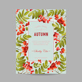 Autumn Photo Frame with Rowan Berry and Leaves. Seasonal Fall Design Card Royalty Free Stock Photo