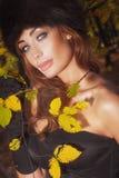 Autumn photo pf beauty woman Stock Photo