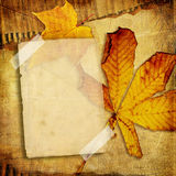 Autumn photoalbum. Vintage background with blank page and leaves Stock Image