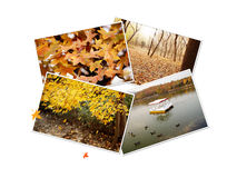 Autumn photos collage Stock Photo