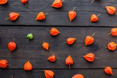 Autumn physalis fruits background, exotic food royalty free stock images