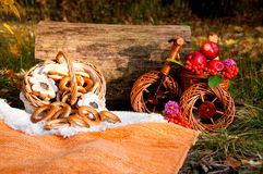 Autumn picnic: basket of bagels and apples in a wicker bike Royalty Free Stock Photography