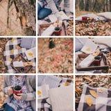 Autumn picnic collage Stock Photos