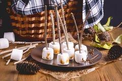Autumn Picnic Food Concept Toasted Marshmellow auf Stock-hölzerne Hintergrund-Platten-Kegel-der Weidenpicknick-Korb-Decke getont Stockfotografie