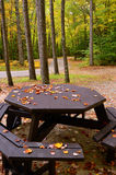 Autumn Picnic Table Images libres de droits