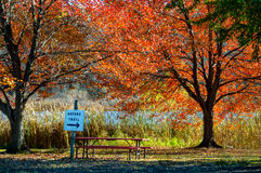 Autumn picnic table and trail Stock Image