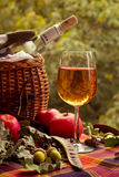 Autumn picnic with white wine, apples and a basket Stock Photos